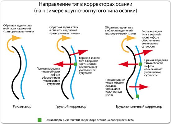 Купить корректор осанки ортопедический (реклинатор) в Москве